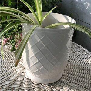 Accents - White Flowerpot